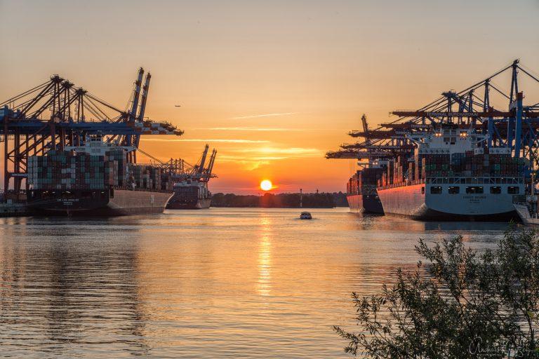 Containerschiffe im Waltershofer Hafen