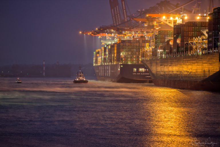 Morgens am Waltershofer Hafen