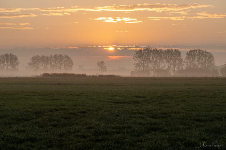 Morgens in Billwerder