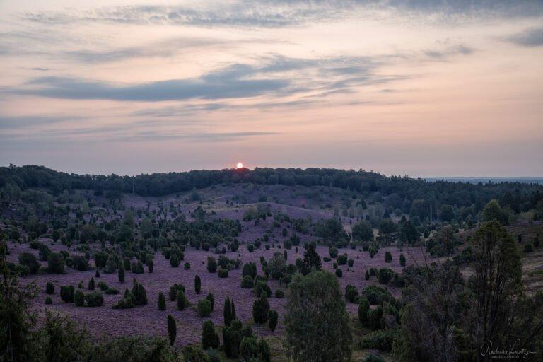 Sonnenaufgang am Totengrund in der Lüneburger Heide