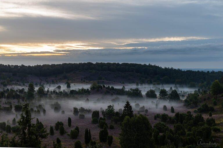 Totengrund mit Nebel